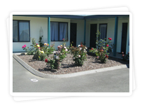 Accommodation, Opotiki, Motels